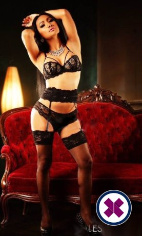 Book a meeting with TS Thai Katty in Oslo today