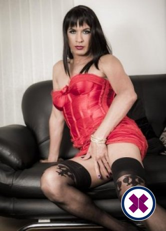 Spend some time with Tgirl Candy in ; you won't regret it