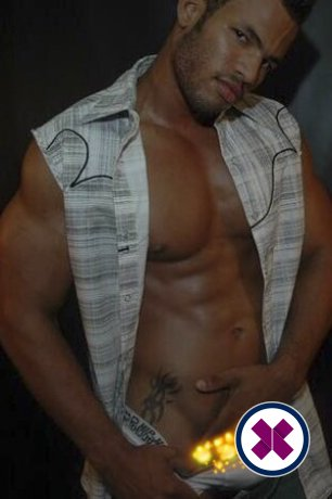 Bernard is a hot and horny Brazilian Escort from Westminster