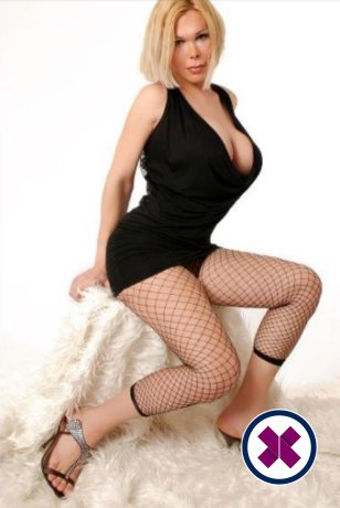 TS Renata Bambola is one of the incredible massage providers in Virtual. Go and make that booking right now