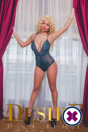 Adda is a super sexy Romanian Escort in Westminster