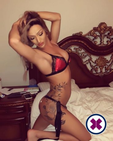 Meet the beautiful Samantha TS in Stockholm  with just one phone call